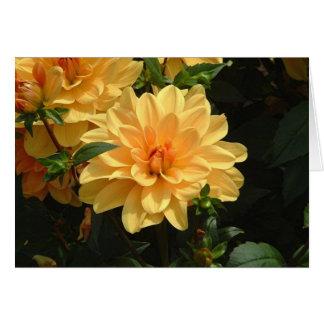 """Old Fashioned Orange Dahlia"" Greeting Card"