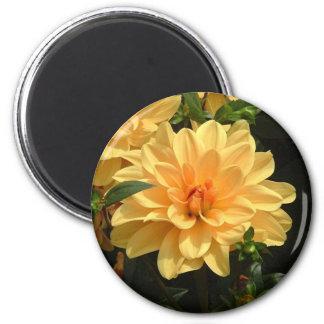 """Old Fashioned Orange Dahlia"" 6 Cm Round Magnet"