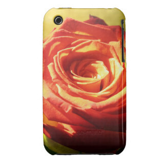 Old Fashioned Rose Case-Mate iPhone 3 Cases