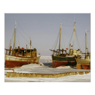 Old-fashioned, weathered fishing boats beached poster
