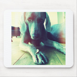 Old fashioned Weimaraner photo Mouse Mat