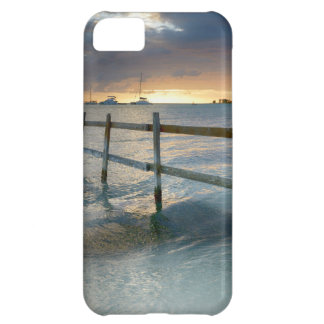 Old fence running into the ocean iPhone 5C case