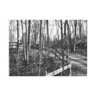 Old fenced road canvas print
