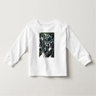 Old Fig Tree Tshirt