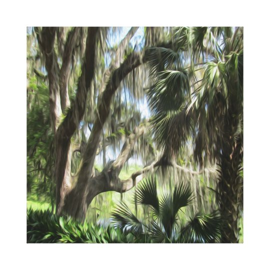 Old Florida Palm Trees and Moss Canvas Print