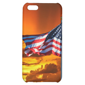 OLD GLORY iPhone 5C COVERS