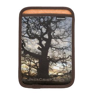 Old Gnarled Oak Tree Silhouette iPad Mini Sleeve