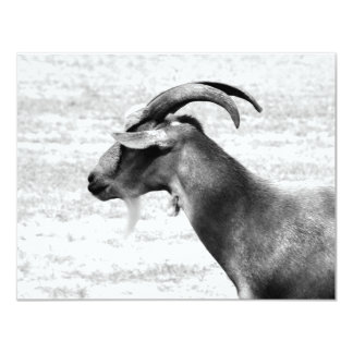 Old Goat 11 Cm X 14 Cm Invitation Card
