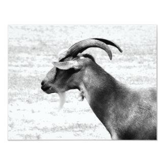 Old Goat 11 Cm X 14 Cm Invitation Card