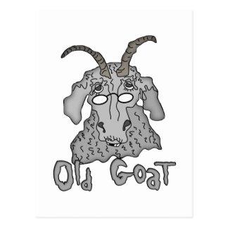 Old Goat Funny Cartoon Postcard