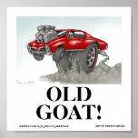 OLD GOAT! PRINT