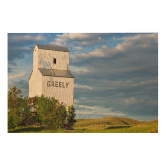 Old Grain Elevator In Virgelle, Montana, USA Wood Print