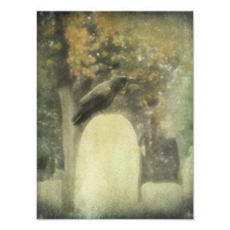 Old Graveyard Raven Photo Print