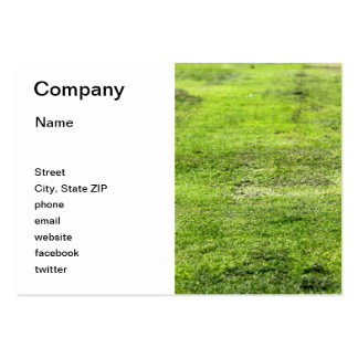 Old Green Grass Pack Of Chubby Business Cards