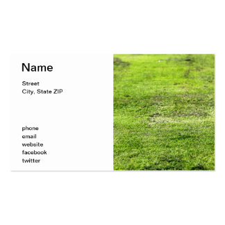 Old Green Grass Pack Of Standard Business Cards