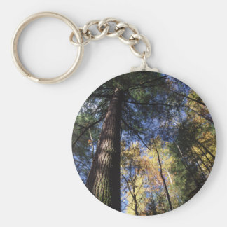 old growth basic round button key ring