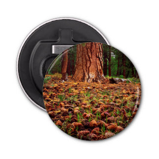 Old-growth Ponderosa tree with pine cones Bottle Opener