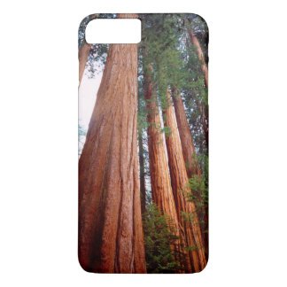 Old-growth Sequoia Redwood trees iPhone 8 Plus/7 Plus Case