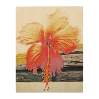 Old Hawaiian Hibiscus Wood Canvas
