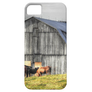 old horse barn iPhone 5 covers