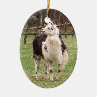 Old Llama ~ ornament