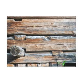 Old Log Wall Canvas Print