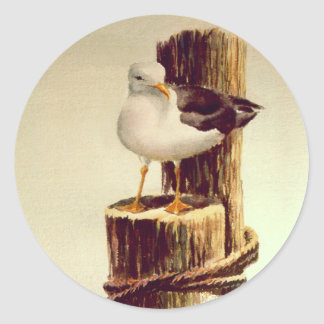 OLD MAN SEAGULL by SHARON SHARPE Classic Round Sticker