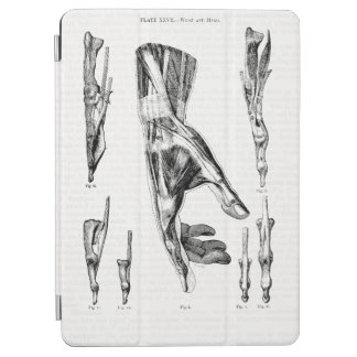 Old Medical Art Muscles of the Hand and Wrist iPad Air Cover