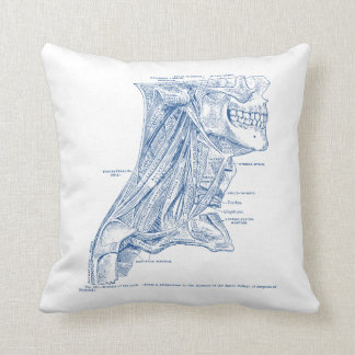 Old Medical Drawing Muscles of the Neck Blue Cushion