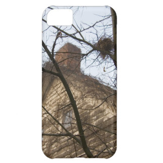 Old & New, Birds Nest & Farmhouse iPhone 5C Case