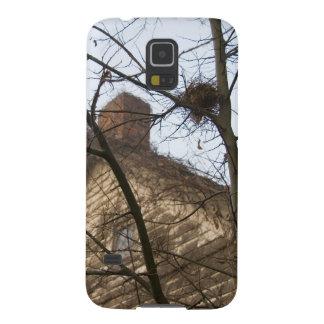 Old & New, Birds Nest & Farmhouse Cases For Galaxy S5