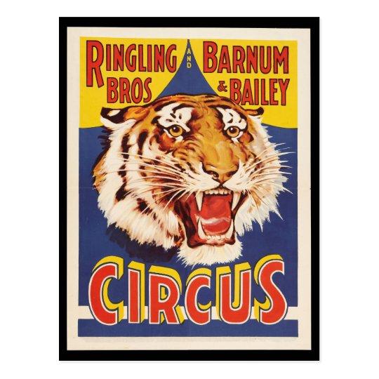 Old original vintage tiger circus poster 1900s postcard