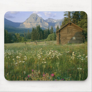 Old Park Service cabin in the Cut Bank Valley Mouse Mat