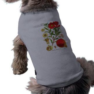 Old Pomegranate Illustration Sleeveless Dog Shirt