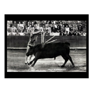 Old Postcard - A Bullfight