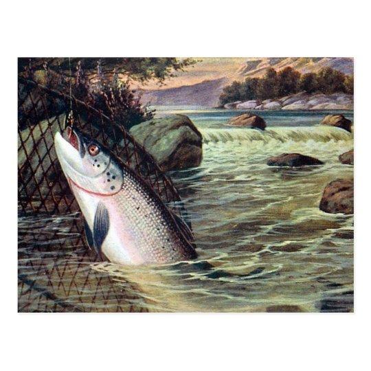 Old Postcard - A Salmon Landed