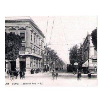Old Postcard - Avenue de Paris, Tunis