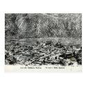 Old Postcard - Bathang, Tibet