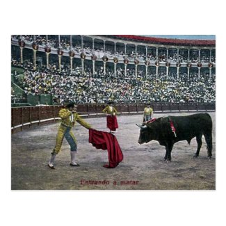 Old Postcard - Bullfighting