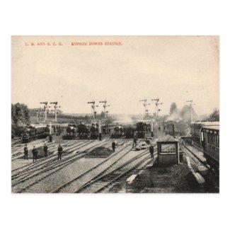 Old Postcard - Epsom Downs Station