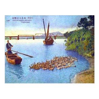 Old Postcard - Formosan Duck-Keeper