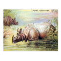 Old Postcard - Indian Rhinoceros