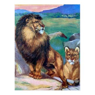 Old Postcard - Lions