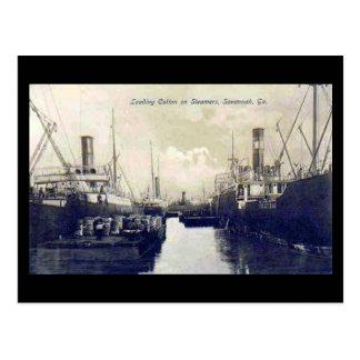 Old Postcard, Loading Cotton, Savannah, Georgia Postcard