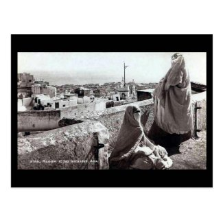 Old Postcard - Rooftops of Algiers