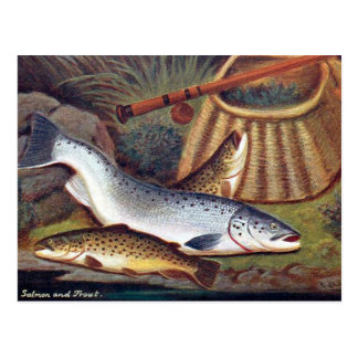 Old Postcard - Salmon and Trout