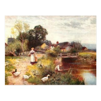 Old Postcard - Summer Day
