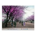 Old Postcard - Yokohama, Japan