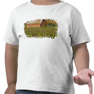Old red barn at the edge of Zinfandel vineyard Tshirts