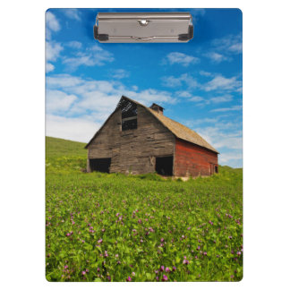 Old, red barn in field of chickpeas clipboard